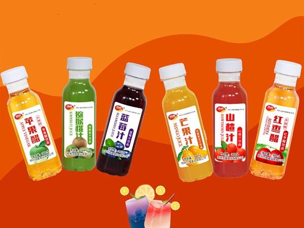 常喝蓝莓果汁饮料有哪些好处?顶真带您了解